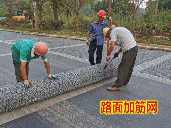 資陽路面加筋網